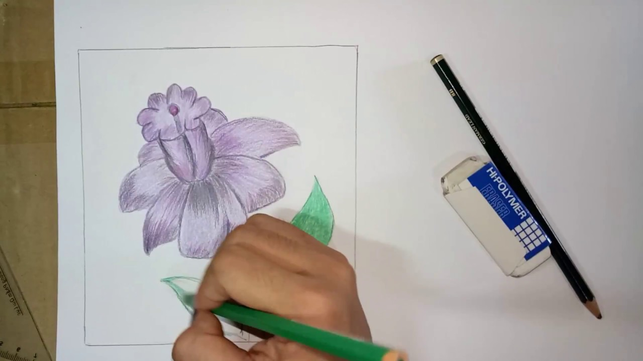 How To Draw Flower Designs On Paper Youtube