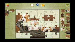 Cute Dog And Puppies Jigsaw Puzzle Video For Kids Apps Gameplay