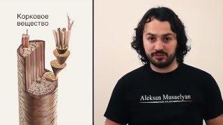 Алексан Мусаелян - Колористика. Урок№3. Координация цвета, фон осветления
