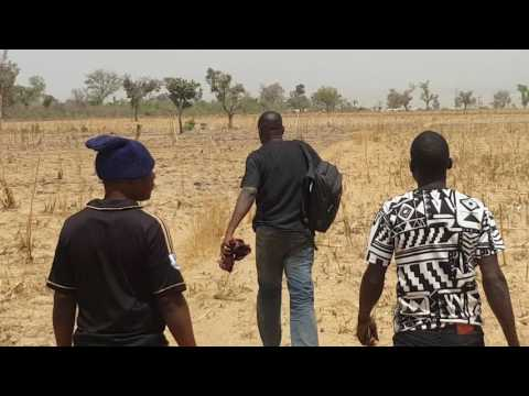 Farming Nigeria: Arable Land for Maize, Soyabean and Beans planting in Kaduna State.