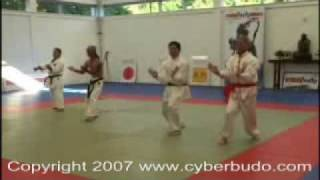 comparitive karate san chiem ( sanchin ) San zhan
