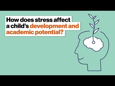 How does stress affect a child's development and academic potential? | Pamela Cantor