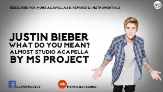 Justin Bieber - What Do You Mean? (Official Acapella - Vocals Only) + DL