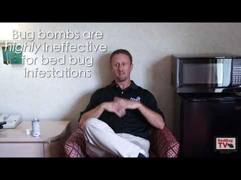 Bed Bug Bombing VS Fumigation