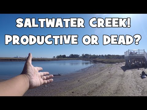 PRODUCTIVE OR DEAD?! Exploring & Fishing a SALTWATER CREEK in NJ! (Absecon, NJ)