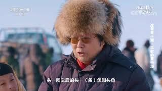 [跟着书本去旅行]一打网就可以捞到鱼吗?| 课本中国