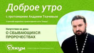 О СБЫВАЮЩИХСЯ ПРОРОЧЕСТВАХ, о. Андрей Ткачев о паломничестве в Россию, свежем воздухе и смраде