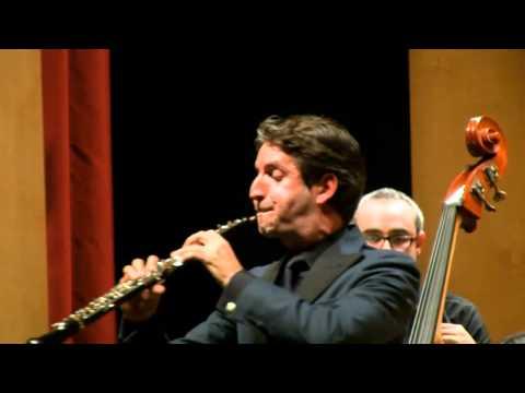 Alessandro Marcello - Adagio dal Concerto per oboe in re minore
