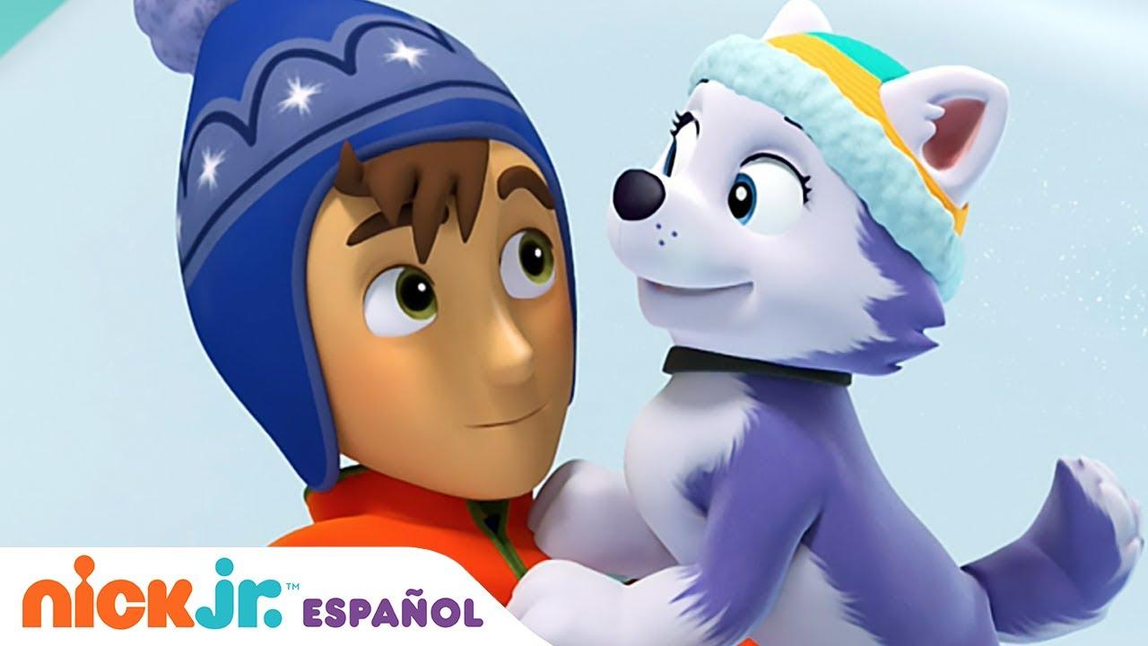 Download PAW Patrol, Patrulla de cachorros   🐶 El nuevo cachorro 🐶   Nick Jr. en Español