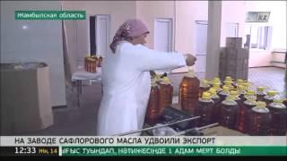 На заводе сафлорового масла удвоили экспорт