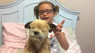 Webkinz Signature Border Terrier Review