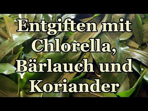 Natürlich Schwermetalle Entgiften Mit Chlorella, Bärlauch Und Koriander - Tinktur Selber Herstellen