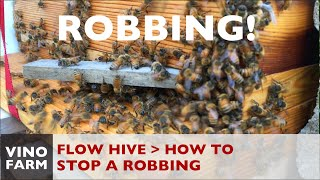 Flow Hive - How to Stop a Robbing (Lessons Learned)