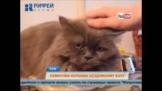 Пермяки собирают средства на памятник-копилку бездомному коту