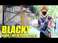 Dunia Kicau Aksi Kapas Tembak Blacky Juara  Milik Fujhie Slan C Di Mega Latpres Rindu Alama  Mp3 - Mp4 Download