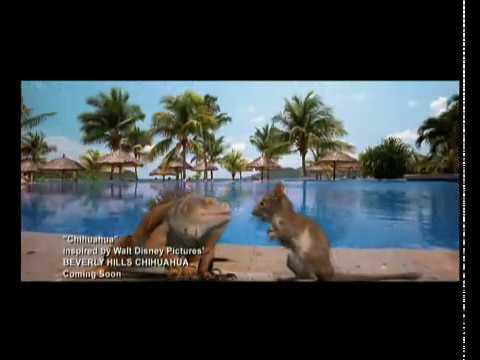 Disney España | Videoclip Musical Un Chihuahua en Beverly Hills