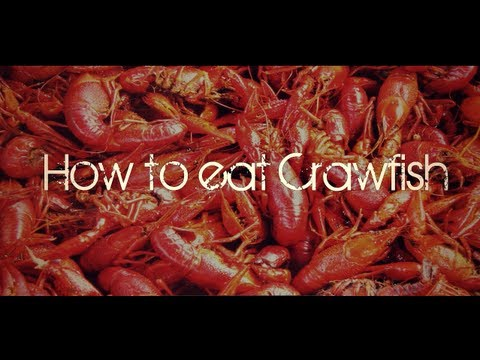 How To Eat Crawfish : Neworleans Style