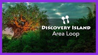 Discovery Island Area Loop (2018 - Present) - Disney's Animal Kingdom