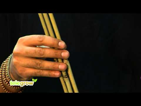 Telegrow - Tutor de Bambú para sostener plantas
