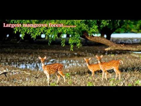 Tourism in Bangladesh (Presenting World Turism Day 2014)