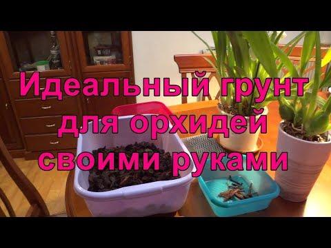 🌺 Идеальный грунт для орхидей фаленопсис, камбрия, мельтония и цимбидиум. Своими руками!