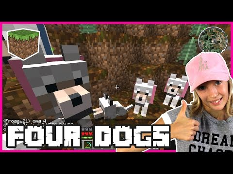 Four Dogs / Name my Dogs / Minecraft