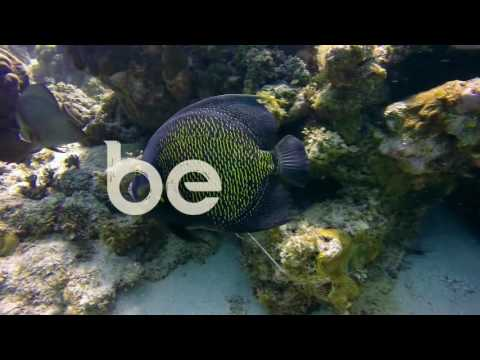 Belize North Islands HD