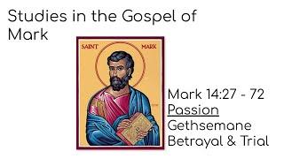 Mark lesson 24