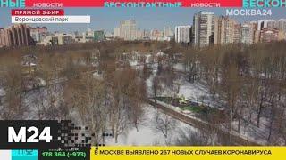 Воронцовский парк опустел из-за коронавируса - Москва 24