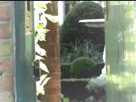 Freddie Mercury s Garden