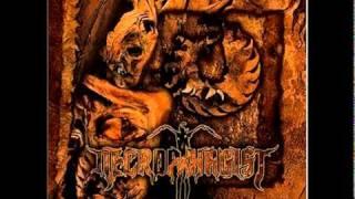 Necrophagist - Fermented Offal Discharge (8-bit)