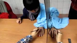 台大知覺心理學 Rubber-hand illusion
