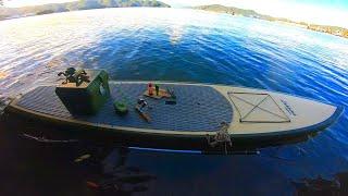 たわいもない日常の釣り【真夏の巨大魚釣り編】
