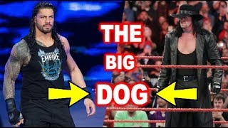 Real Reason !! Why Roman Reigns Is Called The Big Dog ?? Who Give Him This Tittle ??