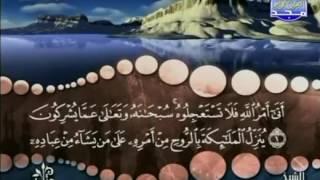 سورة النحل كاملة ترتيل الشيخ محمد صديق المنشاوي من قناة المجد للقرآن
