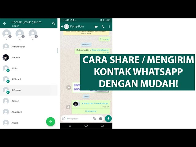 Cara Share atau Mengirim Kontak WhatsApp dengan Mudah