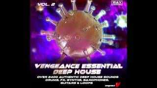 Vengeance-Soundcom - Vengeance Essential Deep House Vol 2