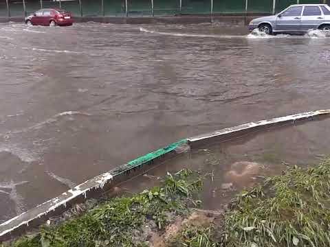 Наводнение Павшинская пойма Красногорск.