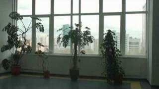 Помещения Офисного центра(, 2010-06-04T12:32:37.000Z)