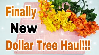 Dollar Tree Haul   Fall, Halloween and more...   Planning With Eli