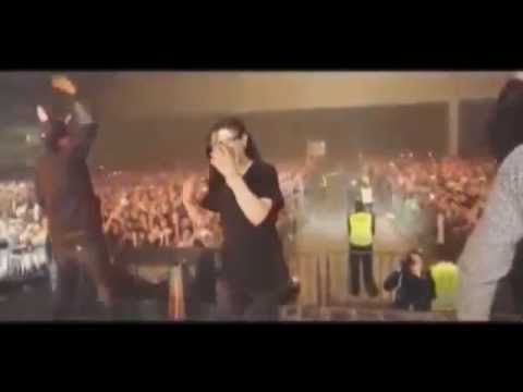 Skrillex Gets Knocked Out At Mexico Concert (1 hour)