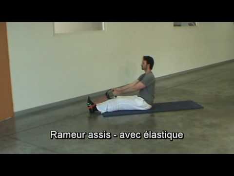 rameur elastique exercices