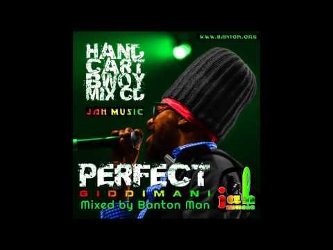 perfect-giddimani----hand-cart-bwoy-:-the-mix-cd