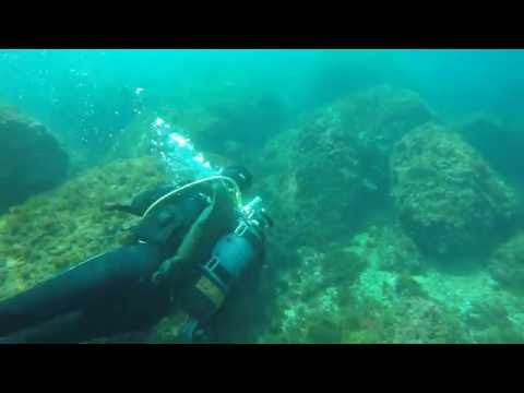 Discover scuba diving in the Calanques National Park - Marseille, France