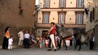 Дискавери. Италия