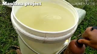 Campuran minuman saat proses penggemukan sapi menggunakan viterna dan EM4 peternakan, di jamin joos