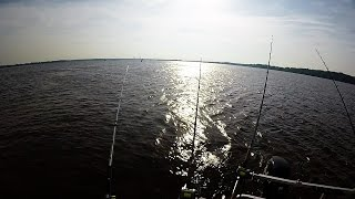 Reel-Em-In!! James River Blues!!