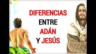 Diferencias entre Adán y Jesús - Juan Manuel Vaz