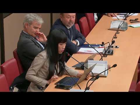Stéphanie DO-Commission économique : M. Nicolas Dufourcq, directeur général de BPIfrance-18/09/2019