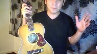 Maton Mini Diesel Special EMD6 Guitar Review in Singapore